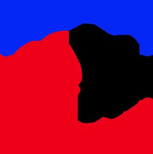 NEHII logo